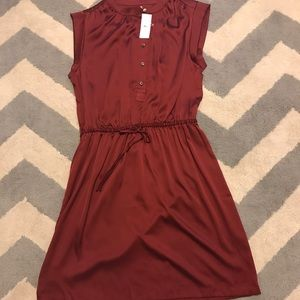 NWT beautiful silk dress